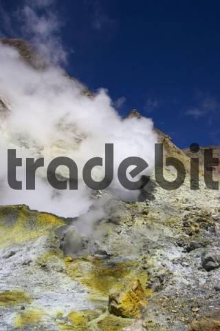 Sulphuric sediment on White Island, volcanic island, North Island, New Zealand, Oceania