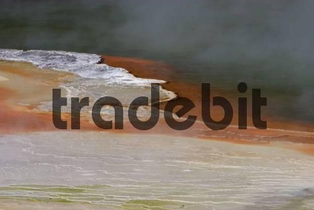 Champagne Pool in the geothermal region near Rotorua, North Island, New Zealand, Oceania