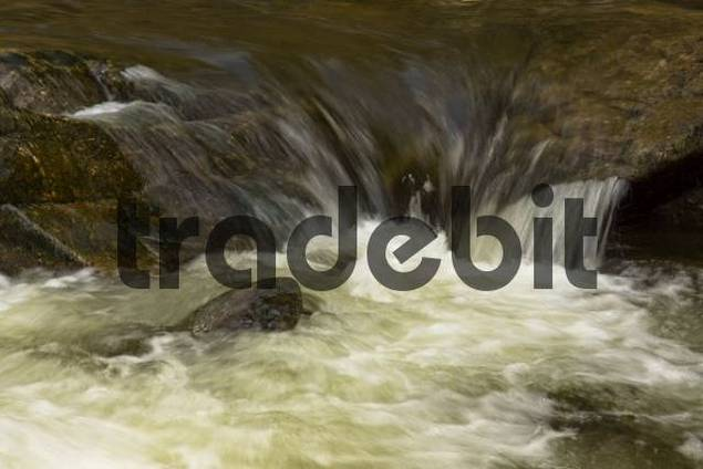 Rapids, Wutach, Black Forest, Baden-Wuerttemberg, Germany, Europe