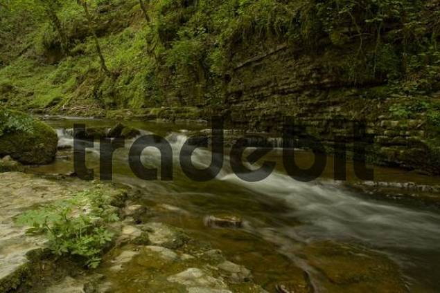 Whitewater, Gauchach River, Black Forest, Baden-Wuerttemberg, Germany, Europe