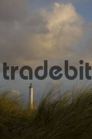 Lyngvig Fyr Lighthouse, sand dunes, Denmark, Europe