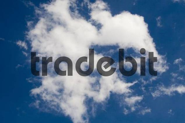 Clouds in a blue sky, Sesto, Italy, Europe