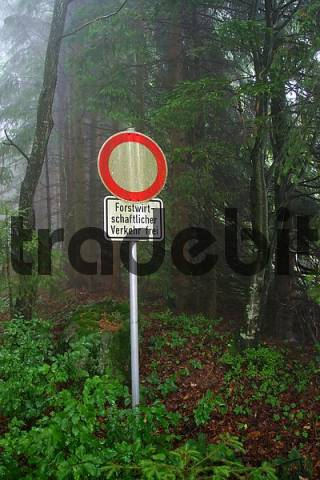 absurd road sign in misty forest area