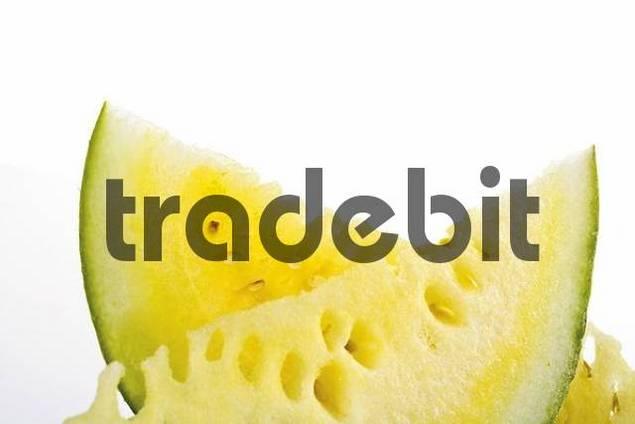 Yellow Watermelon, Watermelon