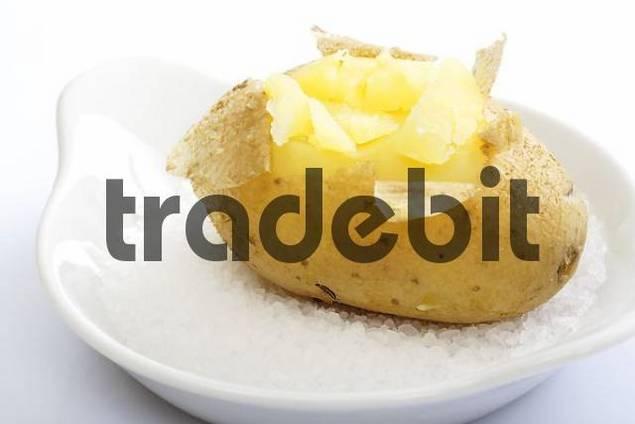 Baked potato, sea salt - Download People