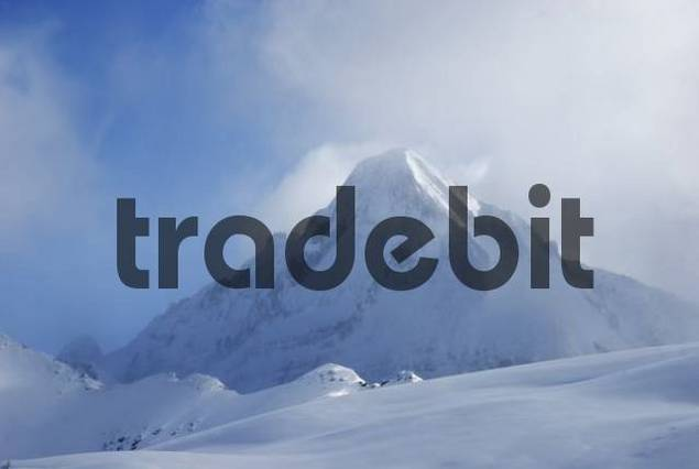 Snow covered mountain peak veiled by icy mist, Zillertal alps Tyrol Austria