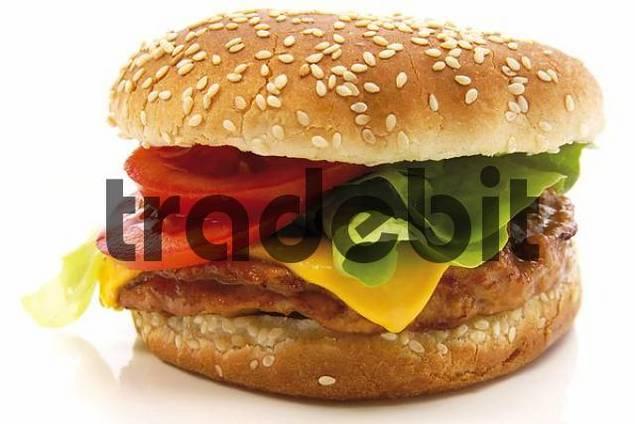 Fast food: cheeseburger