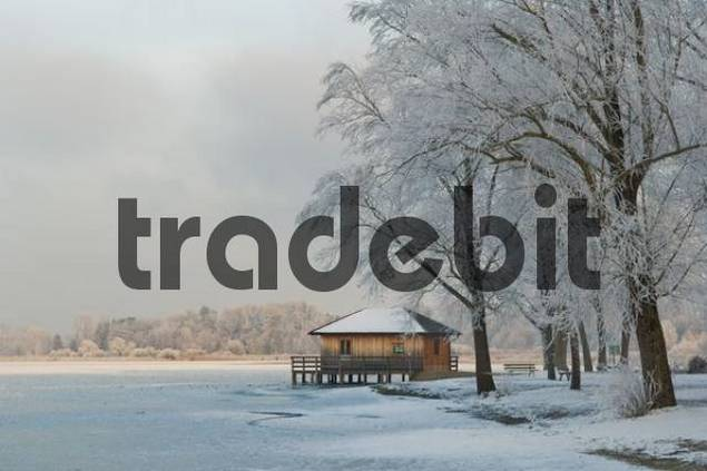 birdwatching lodge at Chiemsee, municipality of Rimsting, Upper Bavaria, Bavaria, Germany