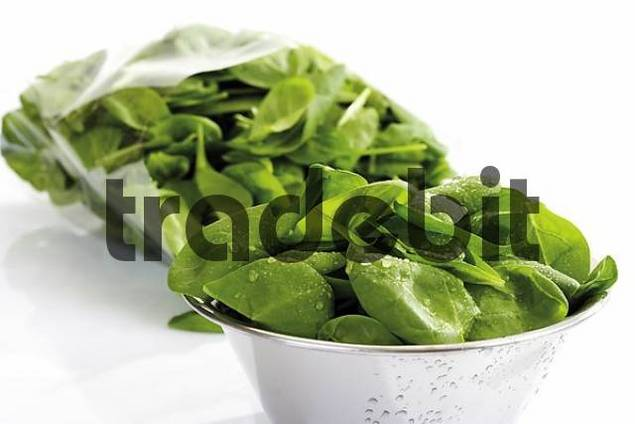 Bowl of baby spinach, package of spinach in background