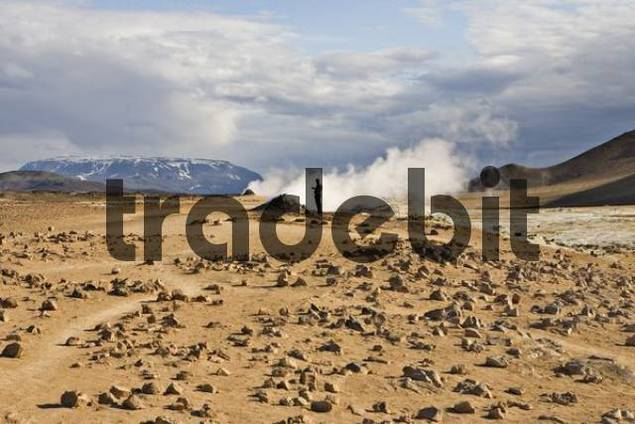 Fumarole, Hveraroend geothermal region at the foot of Mt. Nmafjall, Myvatn, northern Iceland, Iceland, Atlantic Ocean