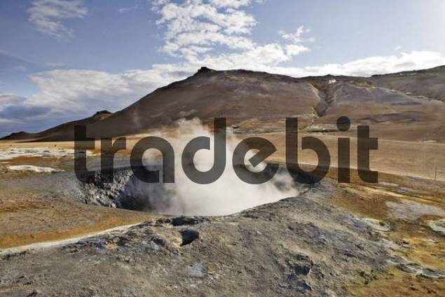 Solfataras, Hveraroend geothermal region at the foot of Mt. Nmafjall, Myvatn, northern Iceland, Iceland, Atlantic Ocean