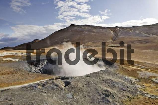 Solfataras, Hveraroend geothermal region at the foot of Mt. Nmafjall, Myvatn, northern Iceland, Iceland, Atlantic Ocean