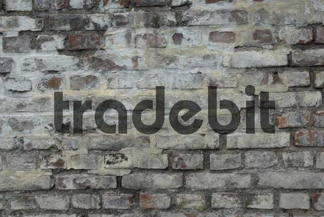 Old brick wall covered in lime and whitewash