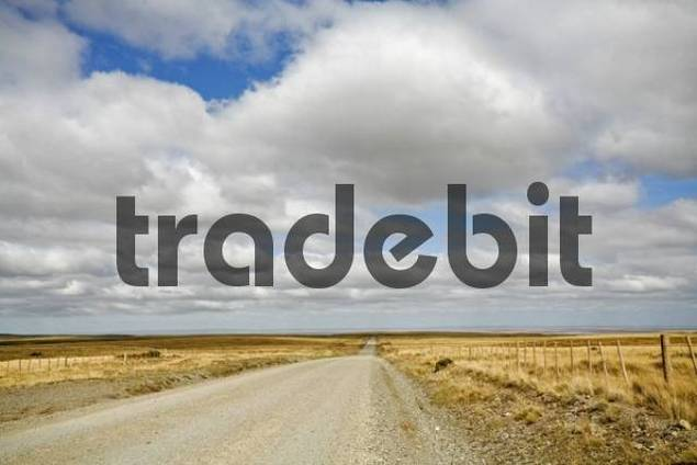 Endless Street at Tierra del Fuego, Chile, South America