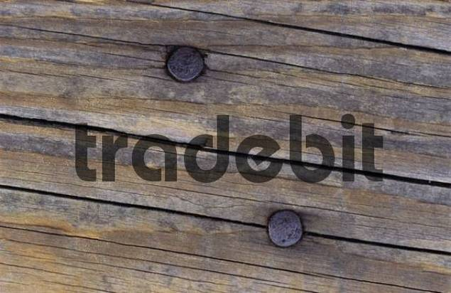 Rusty nails in a weathered, cracked wooden board