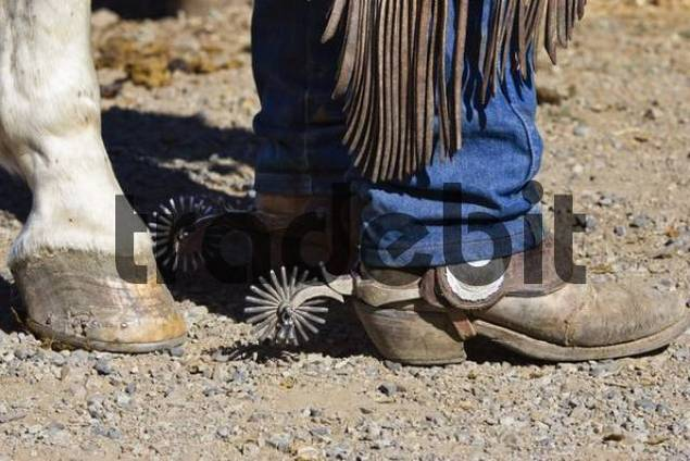 cowboy boots horse hoofs, wildwest, Oregon, USA