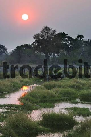Sunset over the North Bridge by the North Camp, North Gate, Moremi Nationalpark, Moremi Wildlife Reserve, Okavango Delta, Botswana, Africa