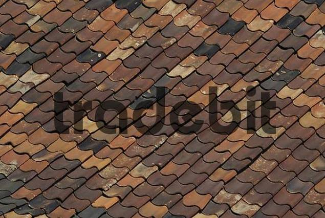 Old roof shingles
