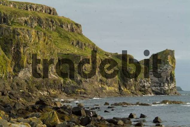 Coastal Cliffs, Lunga Island, Treshnish Isles, Scotland, UK, Europe