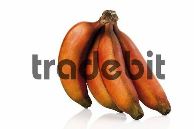 Banane Rot Innen