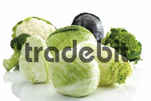 Cabbage varieties: Red Cabbage, Cauliflower, Broccoli, Savoy, Romanesco, Pointed - or Sweetheart Cabbage, Chinese Cabbage and White Cabbage