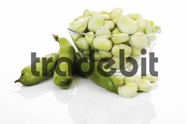 Fresh thick beans