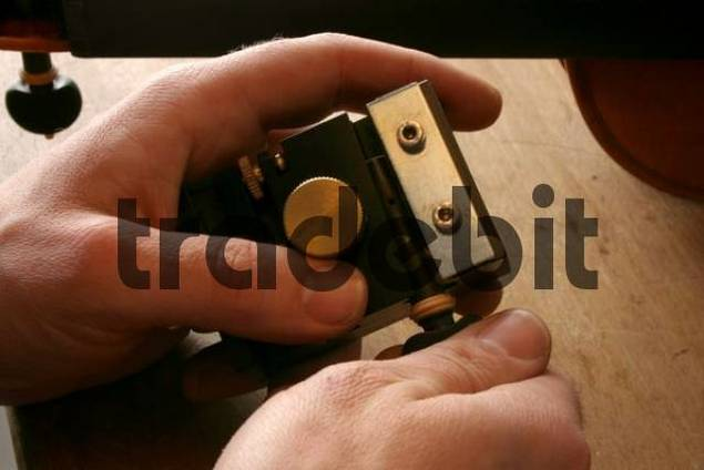 Violin-maker luthier inspecting a tuning peg