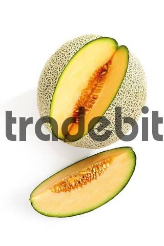 Galia Melon Cucumis melo var. reticulatus