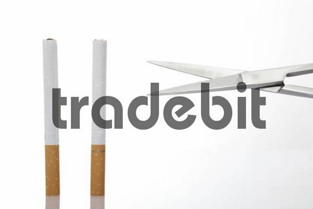 Scissors cutting cigarettes in half