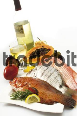 Coral Grouper and Bass with fruit and a glass of white wine
