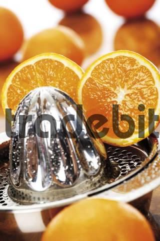 Oranges Citrus, citrus juicer