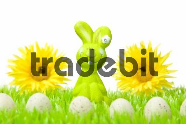 Easter bunny on a flower meadow