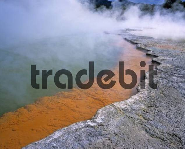 Champagne Pool, Wai-O-Tapu geothermal region, North Island, New Zealand, Oceania