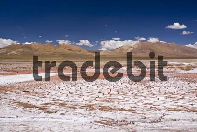Desert landscape with seared earth, Jama pass Paso de Jama, Argentina, South America