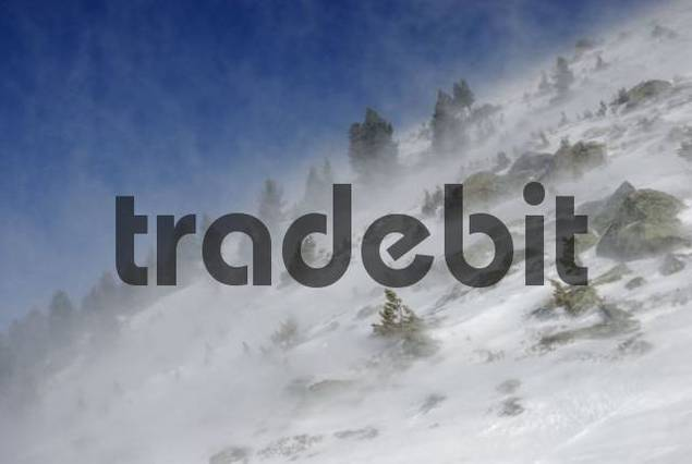Gale-force winds blowing newly-fallen snow during a windstorm, Mt. Glungezer, Tirol, Austria, Europe