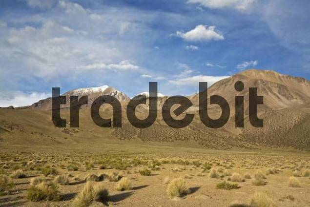 Mountain landscape in national park Lauca on the way to national park Reserva Nacional Las Vicunas, Chile, South America