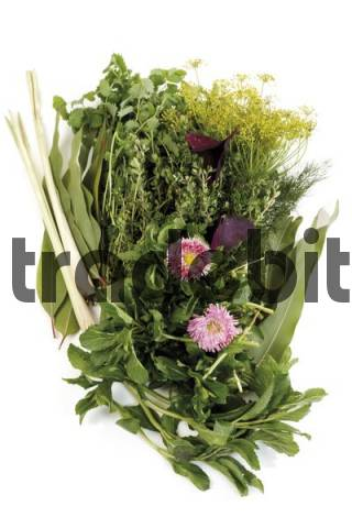 Mixed herbs: daisies, lemongrass, dill, oregano, thyme, bay leaves, burnet and red cloves