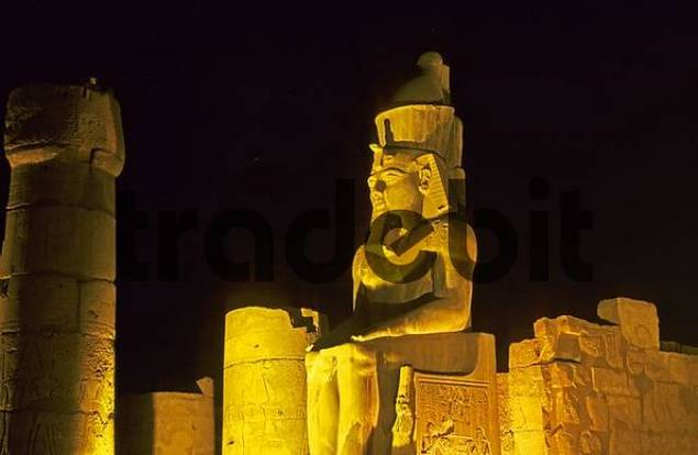 light show in the luxor temple egypt