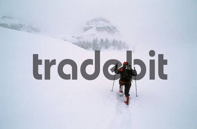 Woman snowshoeing in the Fanes area Dolomites Italy