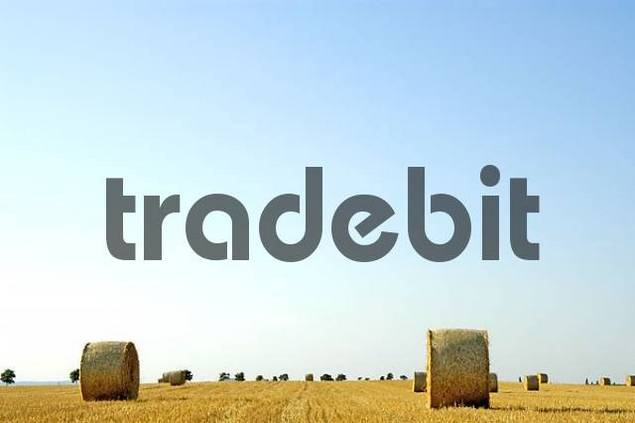 Rolled up Hay bales on a harvested grain field