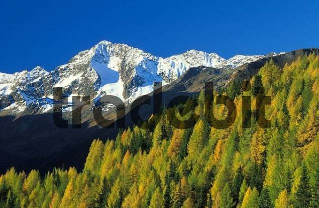 autumn colours in the mountains Alpen