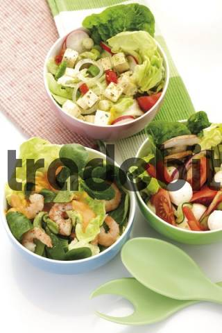 gemischte salate in sch lchen mit salatbesteck. Black Bedroom Furniture Sets. Home Design Ideas