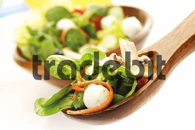 Salad: lambs lettuce, julienned carrots, mozzarella, button mushrooms and tomatoes