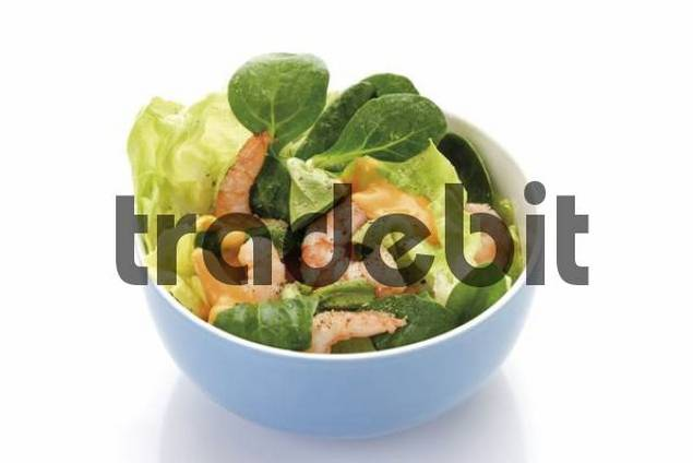 Shrimp salad in a bowl: shrimps, lambs lettuce, head lettuce and cocktail sauce