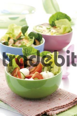 Salad in a bowl: romaine lettuce, cucumber, peppers, button mushrooms and mozzarella, various mixed salads in background, out-of-focus