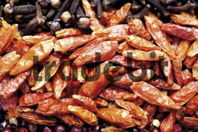 how to use dried chili peppers