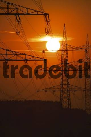 Power masts at sunset