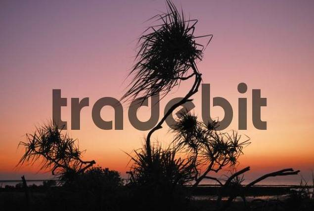 Sunset, East Point, Darwin, Northern Territory, Australia
