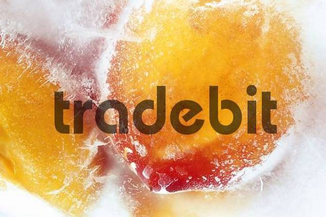 Peaches frozen in a block of ice