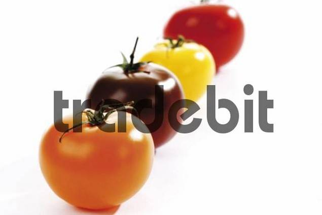 Assorted tomatoes: orange, brown, yellow, red